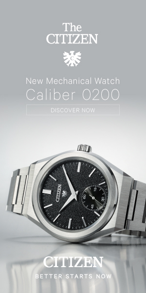 Citizen 300 x 600